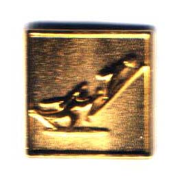 Albertville 1992 pictogram nordic combined gold