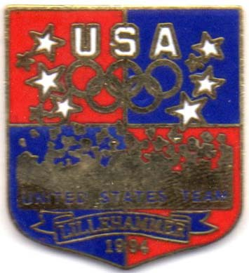 USA shield pin